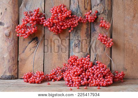 Branches Of Viburnum On A Wooden Table