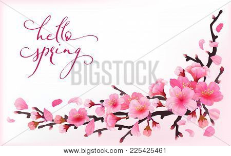 Realistic Sakura Japan Cherry Branch With Blooming Flowers With Text Hello Spring Spring Fresh Pink
