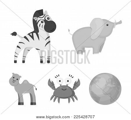 An Unrealistic Monochrome Animal Icons In Set Collection For Design. Toy Animals Vector Symbol Stock