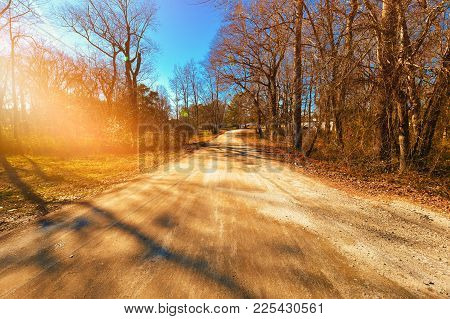 A sunny day down a country dirt road with sun glare and shadows from the trees.