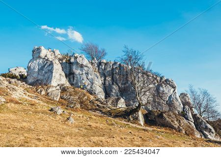 Poland, Podlesice - March 04, 2017: Rock Climbers On Vertical Flat Wall. Gora Zborow Is A Very Popul