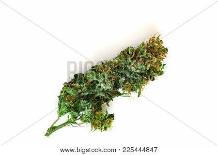 Cannabis Bud Top View Isolated On White Background, The Concept Of Medical Use Thc And Cbd