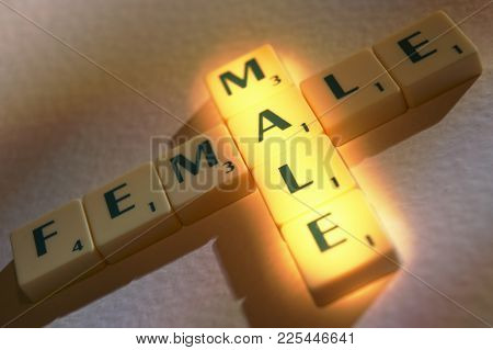 Scrabble Board Game Letters Spelling The Words Male And Female
