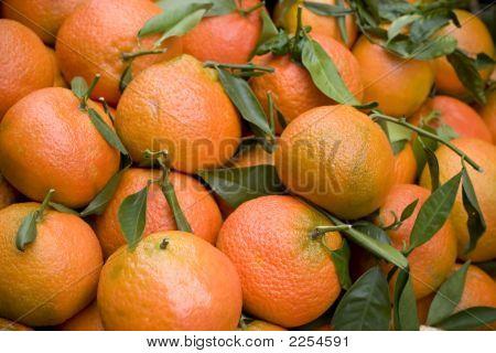 Oranges At Paris Farmer'S Market