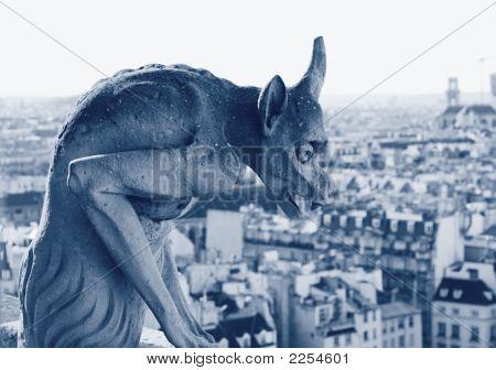 Gargoyle At Notre Dame Cathedral, Paris