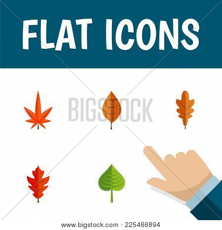 Icon Flat Leaves Set Of Linden, Foliage, Alder And Other  Objects. Also Includes Leaf, Linden, Hicko