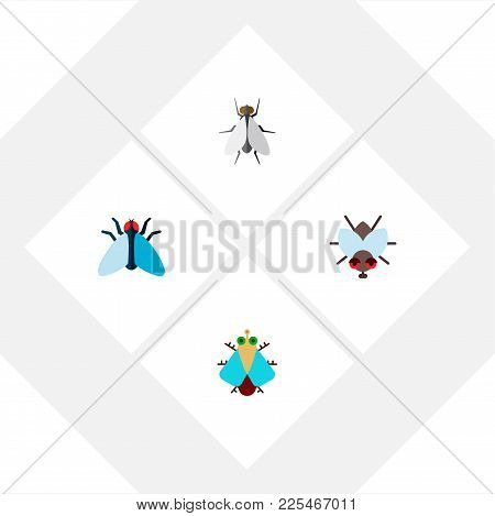 Icon Flat Fly Set Of Tiny, Insect, Fly And Other  Objects. Also Includes Fly, Tiny, Housefly Element