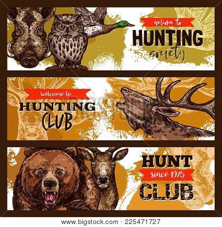Hunting Sport Banner For Hunter Club Template With Wild Animal And Bird. Deer, Duck And Bear, Boar,