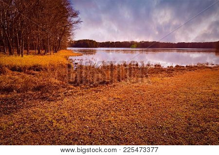 A beautiful view from a grassy shore of a creek leading into a cloudy silver lake. Copy space.