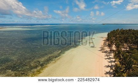 Beautiful Tropical Island With Sand Beach, Palm Trees. Aerial View Of Tropical Beach On The Island S