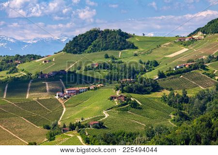 View of green vineyards and rural houses on the hills of Piedmont, Northern Italy.