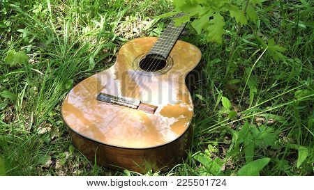 Acoustic Guitar On The Green Grass In The Forest. Guitar In A Park In A Forest Glade Outdoors On A S