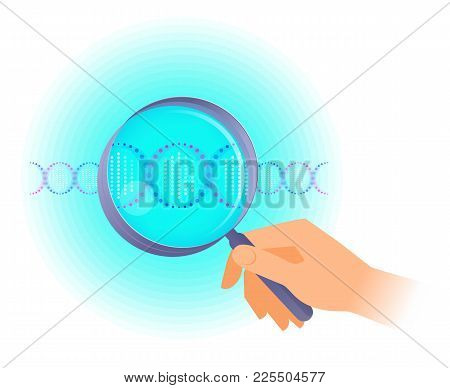 A Scientist Holds A Magnifier And Researches Dna Helix. Flat Vector Illustration Of Human Hand Holdi
