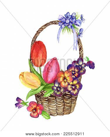 A Variety Of Spring Flowers: Tulips, Pansies, Violets In A Wicker Basket, The Design For A Card, Iso