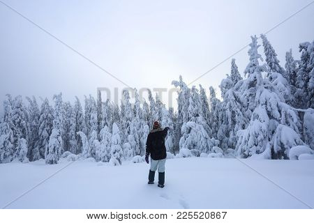 The Girl In Ski Suite Goes On The Trail. On The Lawn Covered With Snow The Nice Trees Are Standing P