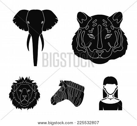 Tiger, Lion, Elephant, Zebra, Realistic Animals Set Collection Icons In Black Style Vector Symbol St