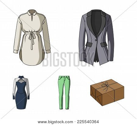 Women's Clothing Cartoon Icons In Set Collection For Design.clothing Varieties And Accessories Vecto