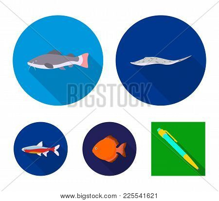Angelfish, Common, Barbus, Neon.fish Set Collection Icons In Flat Style Vector Symbol Stock Illustra