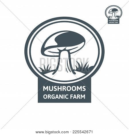 Porcini Mushroom Organic Logo. Vector Emblem Design Mushroom Farm. Design Element, Icon, Emblem And