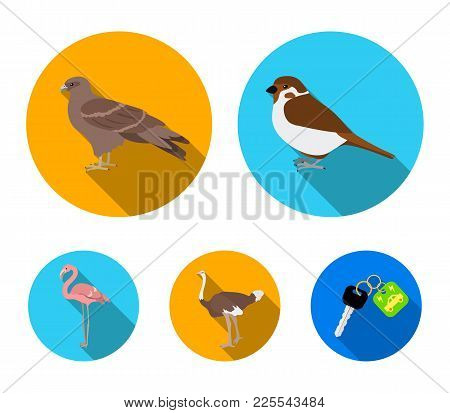 Sparrow And Other Species. Birds Set Collection Icons In Flat Style Vector Symbol Stock Illustration
