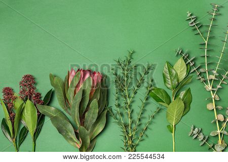 Tools And Accessories Florists Need For Making Up A Bouquet. The Green Florist Workplace. Top View W