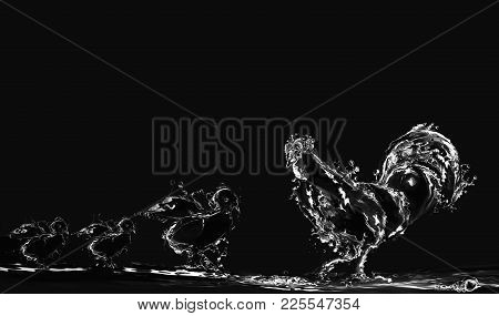A Black Water Rooster With Three Water Chicks. Manipulation Of Water Photos.
