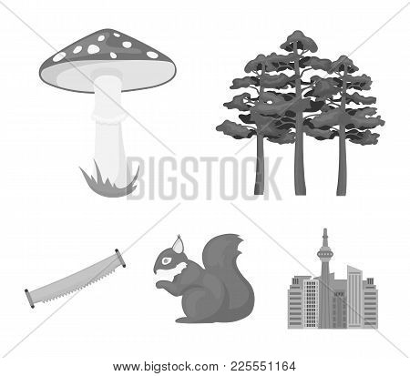Pine, Poisonous Mushroom, Tree, Squirrel, Saw.forest Set Collection Icons In Monochrome Style Vector