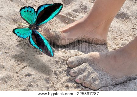 Blue Butterfly And Legs Of  Girl In Song