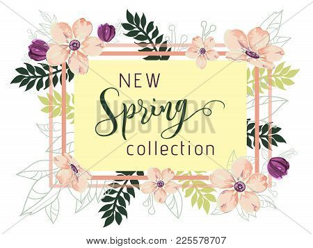 New Spring Collection Background With Beautiful Ligth Pink And Purple Flowers, Vector Illustration T