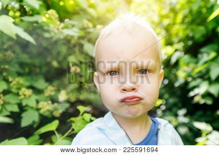 Emotions In The Infant's View, Confusion And Indignation In The Child's View