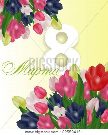 March 8 International Women's Day Greeting Card Template With Flowers. Background With Tulips And Te