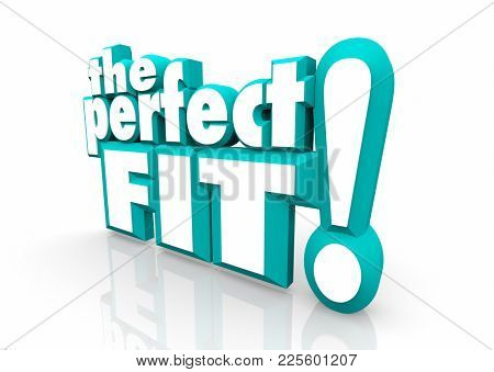The Perfect Fit Words Ideal Candidate Great Choice 3d Illustration