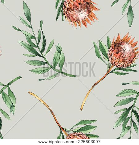 Watercolor Seamless Pattern With Protea Flowers And Leaves Will Be Good For Decor A Gift Wrapping, B