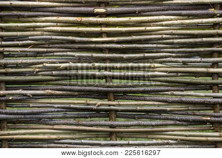 Natural Tree Trunk Texture. Fence Of Wooden Twigs. Garden Decor, Barrier, Border, Boundary. Spring,