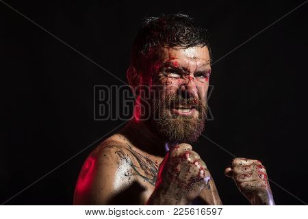 Bearded Man With Blood Paint On Angry Face. Hipster In Fight Position With Fists On Black Background