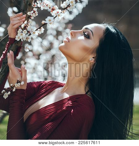 Sensual Woman At Blossoming Tree, Beauty. Girl With White Flower Blossom On Spring Day. Beauty, Look