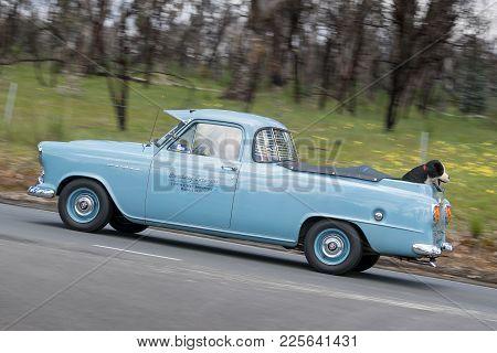 Adelaide, Australia - September 25, 2016: Vintage 1957 Holden Fe Utility Driving On Country Roads Ne