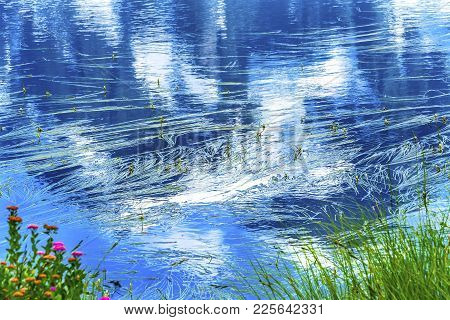 Picture Lake Mount Shuksan Reflection Abstract Wildflowers, Mount Baker Highway Washington Pacific N