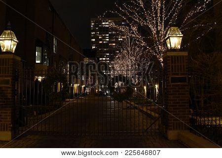 Gated Community With Trees Illuminated For Christmas Holiday Season And Christmas Wreath On Metal Ga