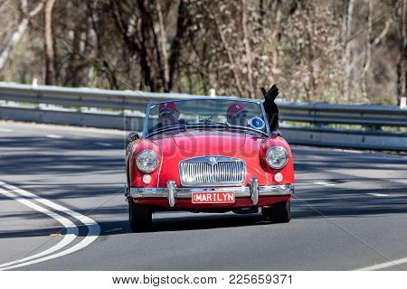 Adelaide, Australia - September 25, 2016: Vintage 1957 Mg A Roadster Driving On Country Roads Near T