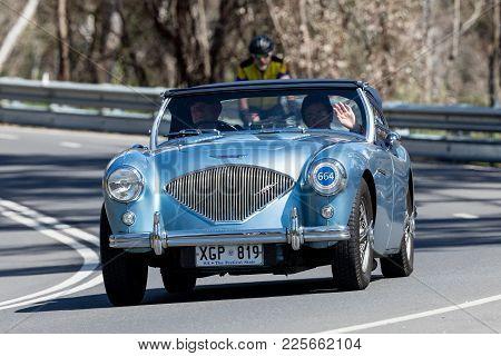 Adelaide, Australia - September 25, 2016: Vintage 1954 Austin Healey Bn1 Sports Roadster Driving On