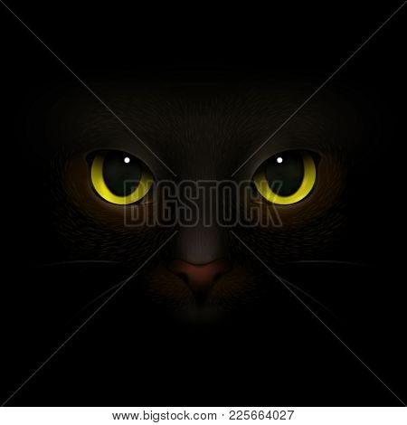 Animals Monsters Realistic Composition With Feline Eyes And Nose Scary Cats Snout Looking Out Of Dar