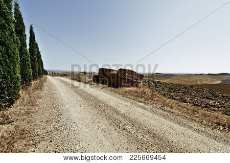 Stubble Fields On The Hills Of Tuscany. Tuscany Landscape After Harvest. Dirt Road Lined With Cypres