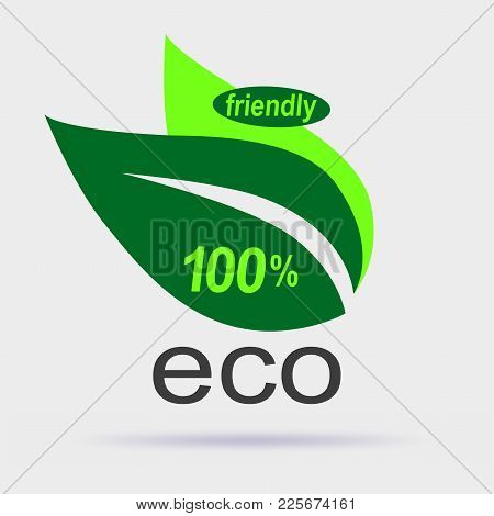 Eco Friendly Label. Eco Logo Design Vector Template On Gray Background. Leaf Icon With Soft Shadow