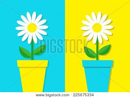 Cactus Icon In Flower Pot. Desert Prikly Thorny Spiny Plant. Minimal Flat Design. Growing Concept. B