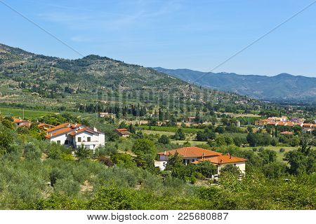 Tuscany Village Between Olive Trees And Vineyards. Italian Landscape With Farmhouses, Fields, Cypres