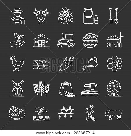 Agriculture Chalk Icons Set. Farming. Agricultural Implement. Isolated Vector Chalkboard Illustratio