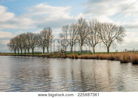 Row Of Bare Tree Silhouettes Against A Cloudy Sky. It Is At  The End Of A Sunny Day In The Dutch Win
