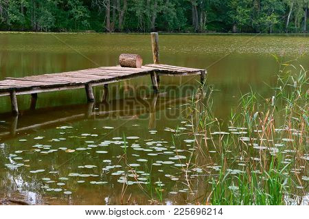 Pier For Fishing, A Picturesque Pond In The Forest, Marshland, Reflection Of Trees In The Pond