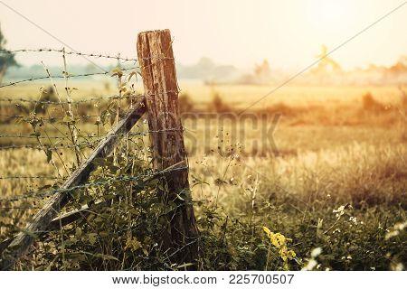 Restrict Area Dry Arid Grass Countryside Hot Summer Season Farm Fence